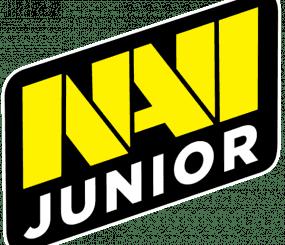Новый турнир для Navi Junior